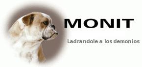 Monit, ladrandole a los demonios